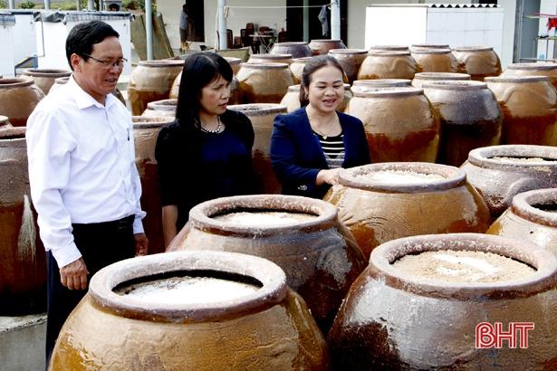 Dư nợ Quỹ Hỗ trợ phát triển hợp tác xã Hà Tĩnh đạt 22,6 tỷ đồng
